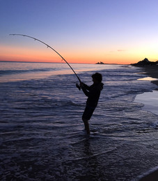 Wells Masterson Surfcasting, Fish On!