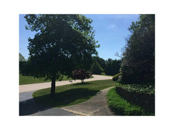 9 West Ridge Rd | Front Lawn