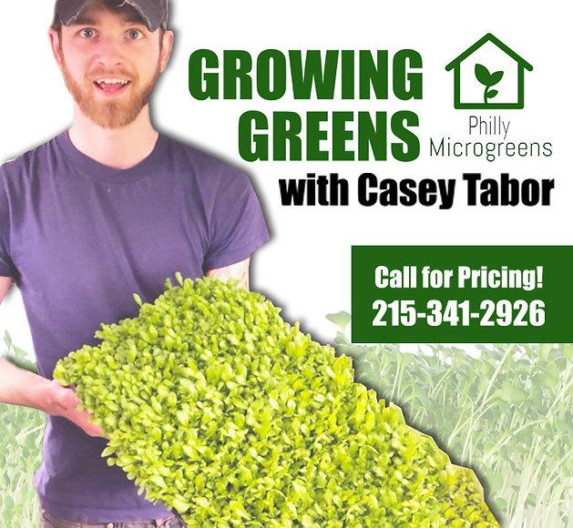 growing greensnoinfo.jpg