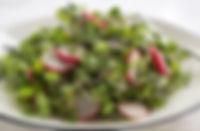 micro-green-salad-everydaydishes_com-H.j