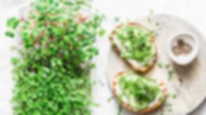 Microgreens_OksanaKiian_.png