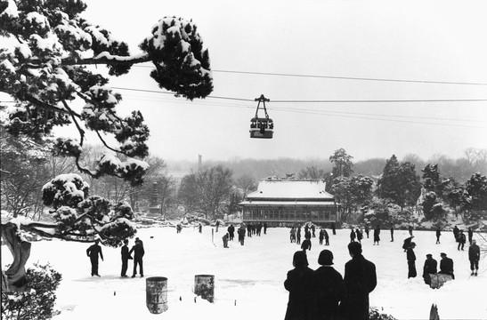 창경궁 춘당지 겨울풍경 - 1961