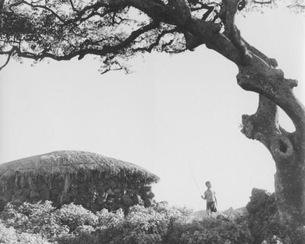 제주도 성읍마을 - 1957