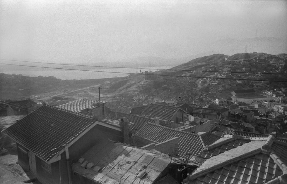 금호동산에서 바라본 한강 압구정동  19641964