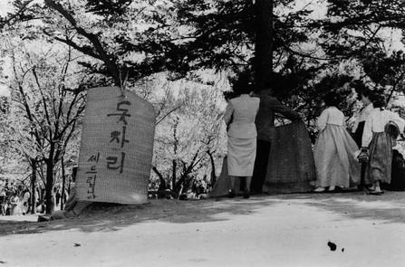 창경궁 봄꽃놀이에서 돗자리 세 놓음 - 1954