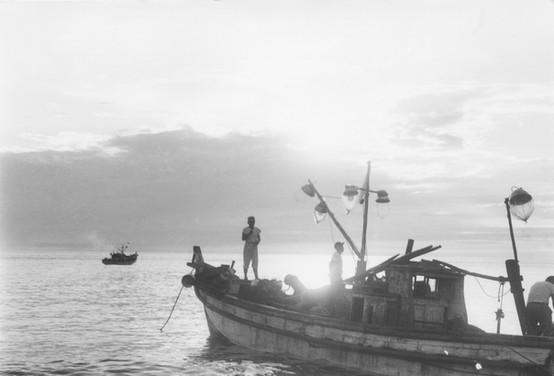 울릉도 오징어잡이 -1956