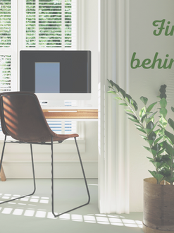 How to Cultivate Peace at Your Desk