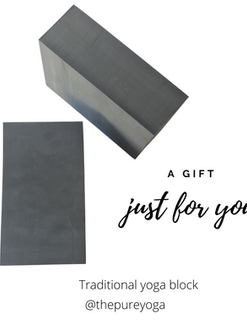 Yoga Blocks - Grey or Purple