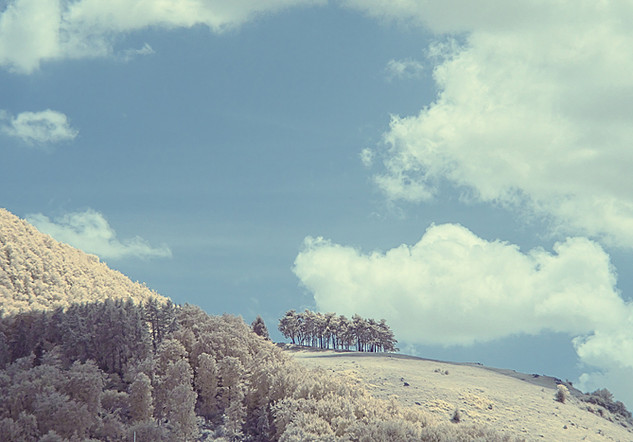land69.jpg