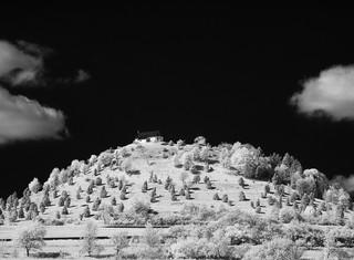 land94a.jpg