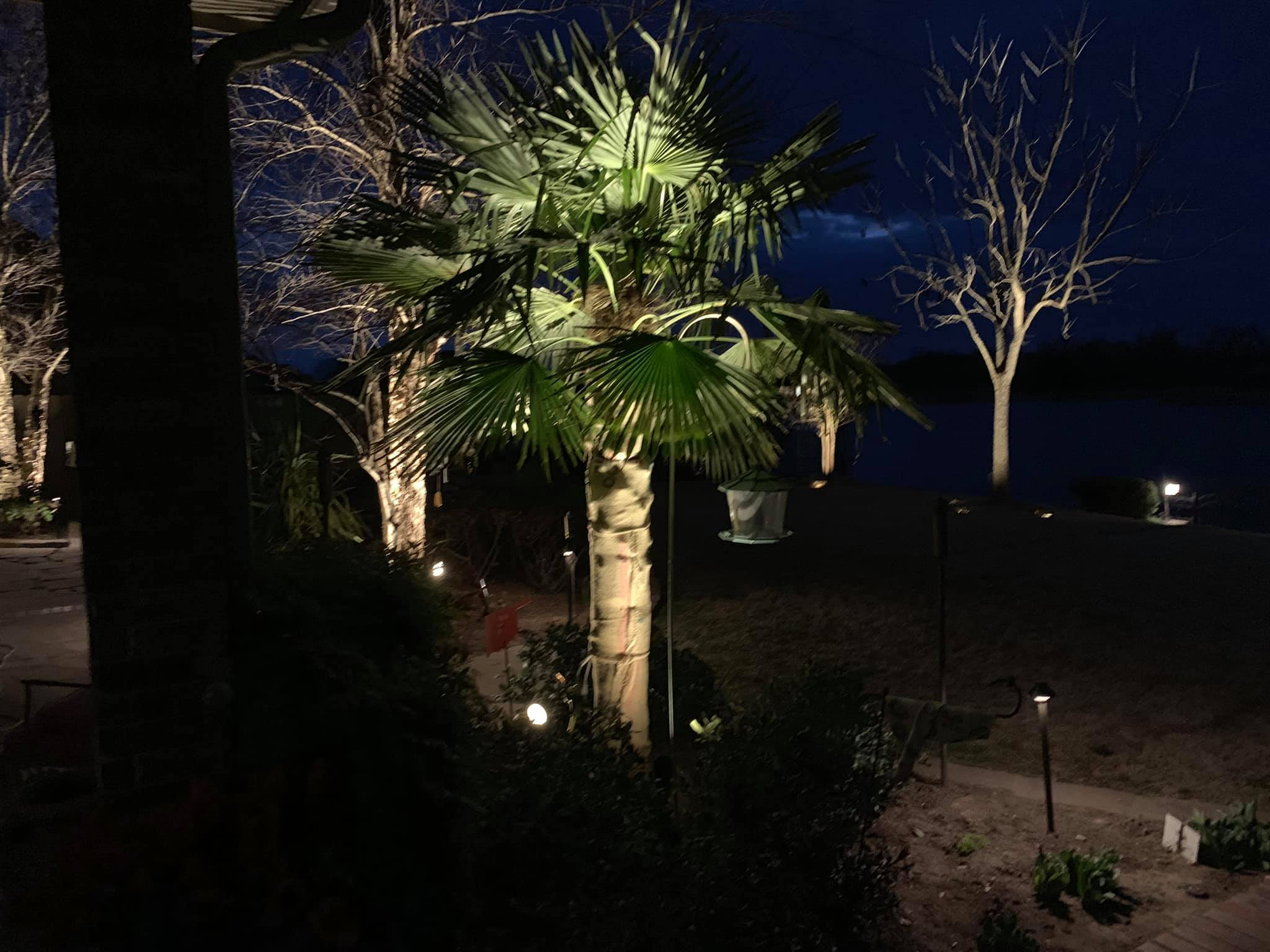 Landscape Lighting Install!