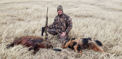 Hog Hunting here at Lazy S Ranch!