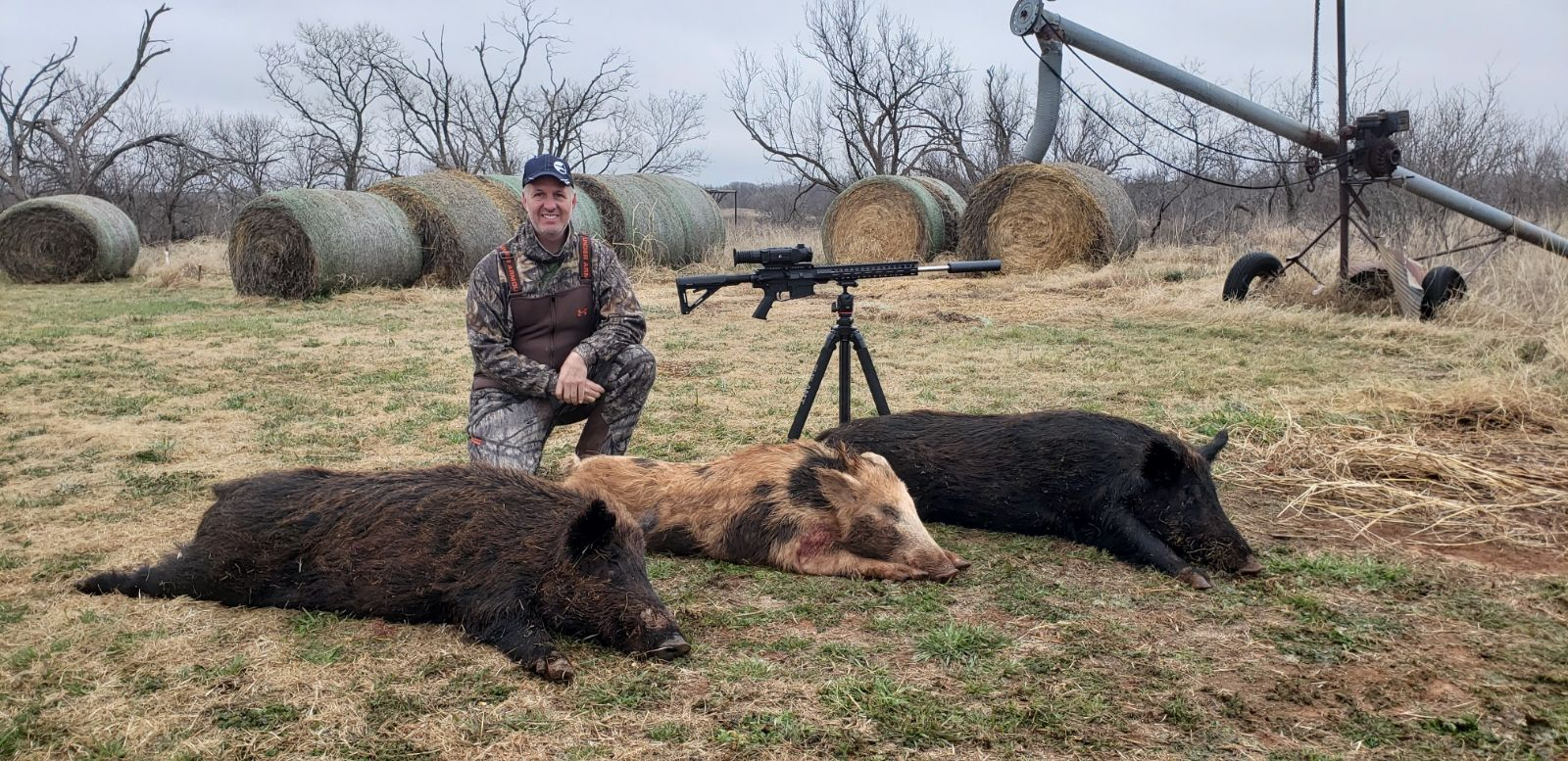 HOG HEAVEN! Just an ordinary day!