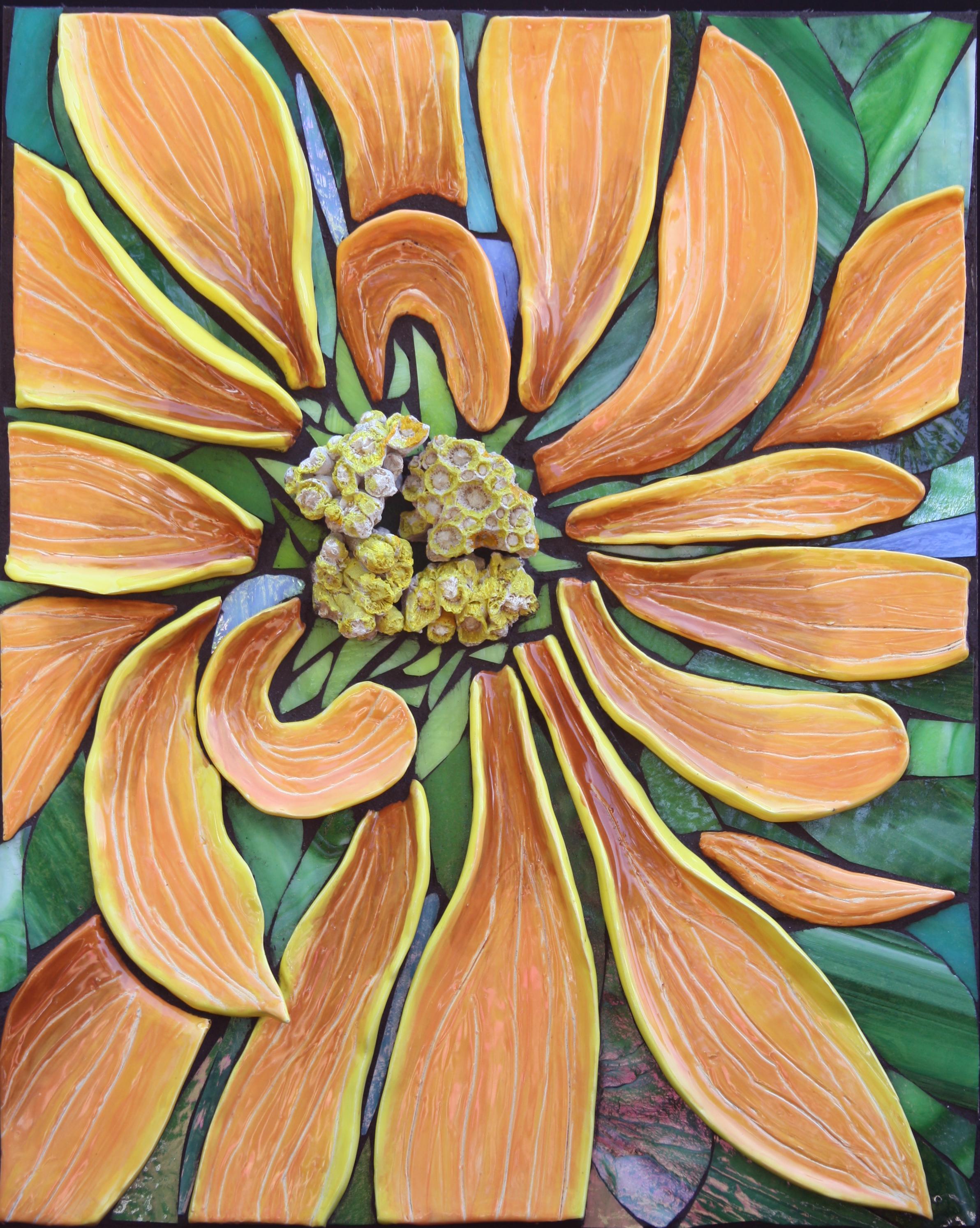 Chrysanthemum $900