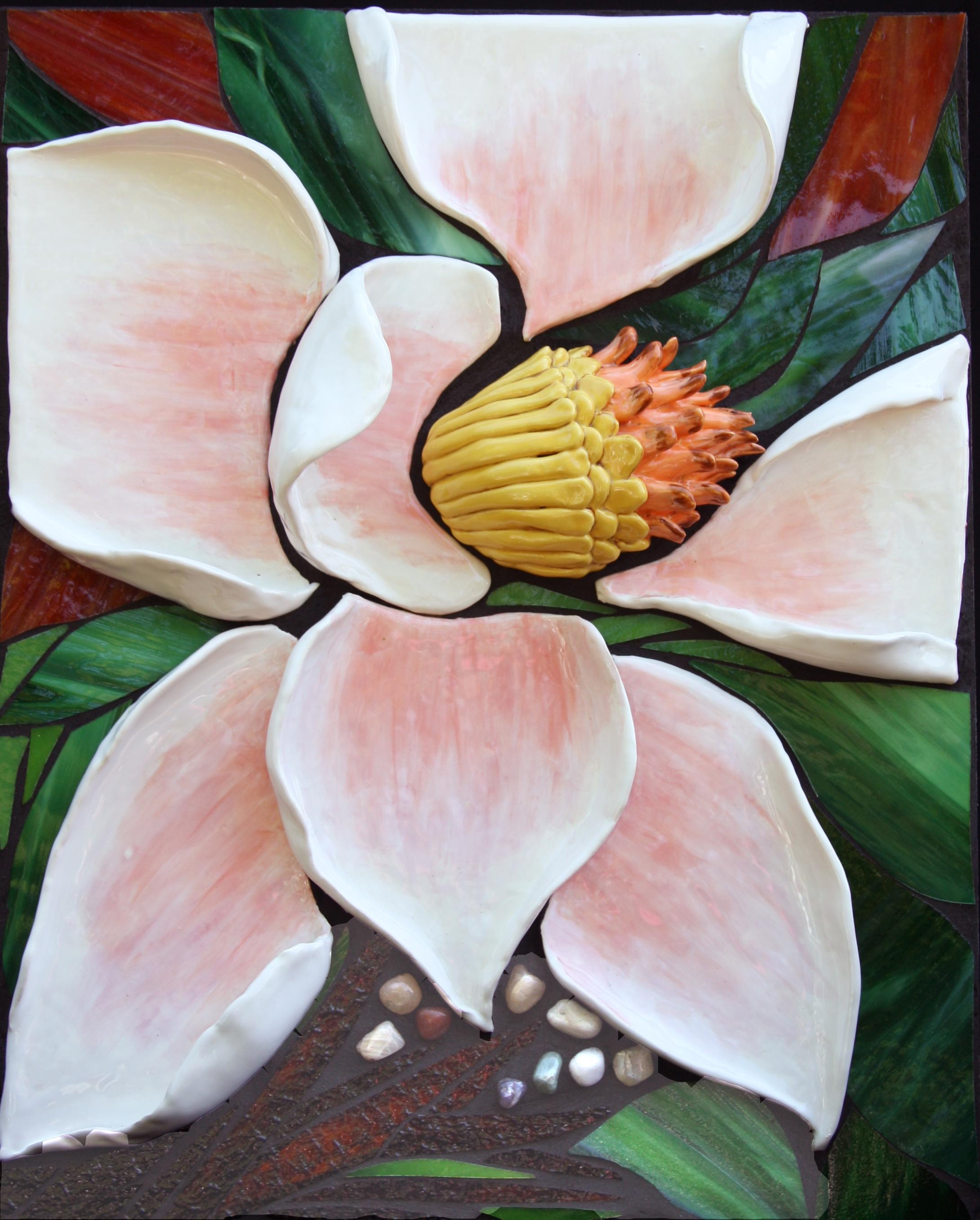 Magnolia  $900