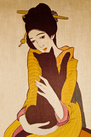 Noren - Geisha and Black Cat