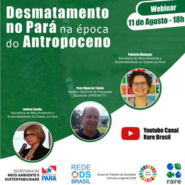 Desmatamento no Pará na época do Antropoceno