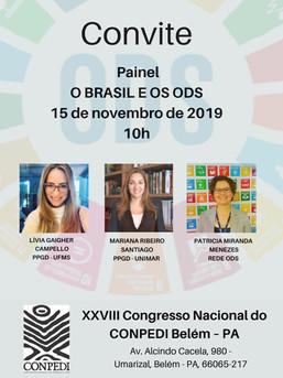 Painel - O Brasil e os ODS