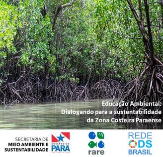 Educação Ambiental: dialogando para a sustentabilidade da Zona Costeira Paraense