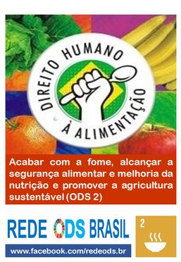 Em defesa do Direito Humano à Alimentação Adequada