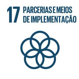 Propostas para alcançar o ODS 17