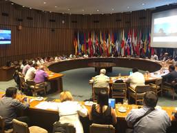 Localización de los Objetivos de Desarrollo Sostenible, compromisos globales y su implementación