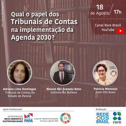 Qual o papel dos Tribunais de Contas na implementação da Agenda 2030?