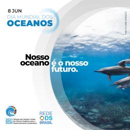 Brasil inicia planejamento para a implementação da Década do Oceano