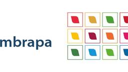 Empresa Brasileira de Pesquisa Agropecuária - EMBRAPA