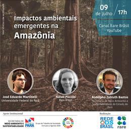 Impactos Ambientais emergentes na Amazônia