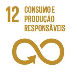 Propostas para alcançar o ODS 12