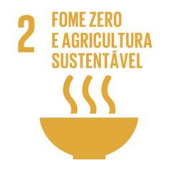 Propostas para alcançar o ODS 2