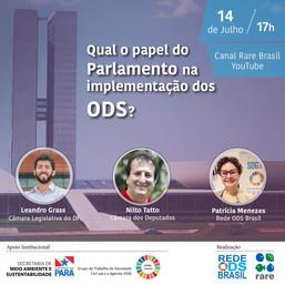 Qual o papel do Parlamento na implementação dos ODS?