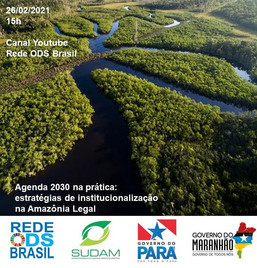 Agenda 2030 na prática: estratégias de institucionalização na Amazônia Legal