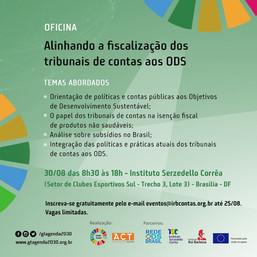 Oficina Alinhando a fiscalização dos Tribunais de Contas aos ODS