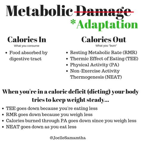 "Metabolic ""Adaptation"""