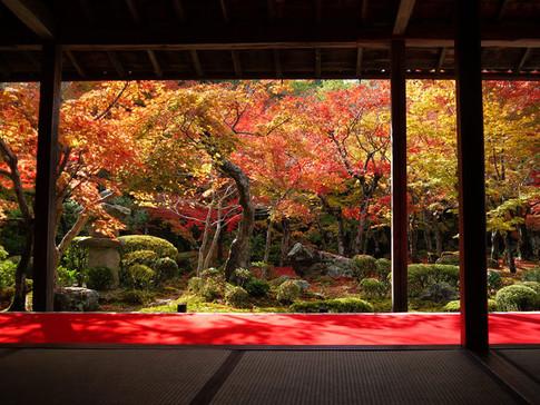 Enko-ji(圓光寺)