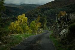 Vers le mont Lozère