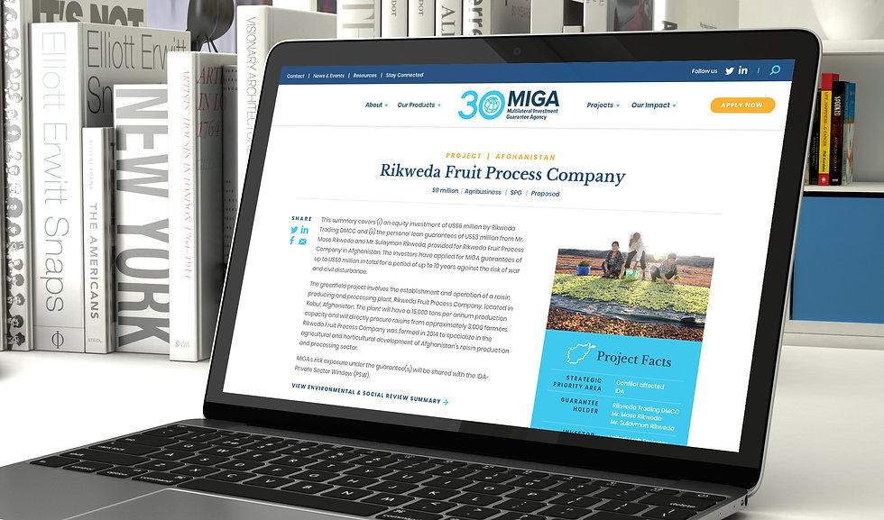MIGA_ProjectDetail.jpg