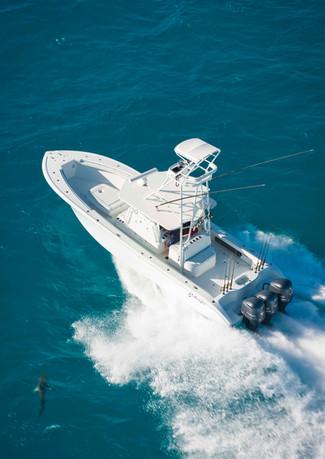 Yellowfin-fishing-boat-shark.jpg