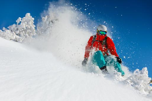 Skier_8d.jpg