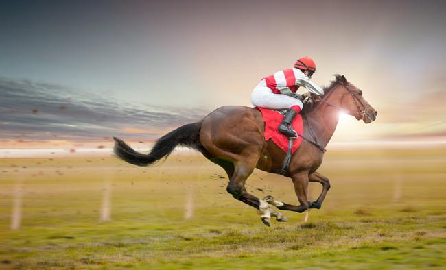 horse_racing_jockey_finish_33d.jpg