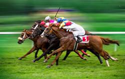 horses_racing_derby_4c