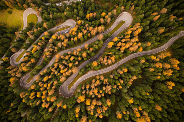 zigzag_forest_road_aerial_view_2.jpg