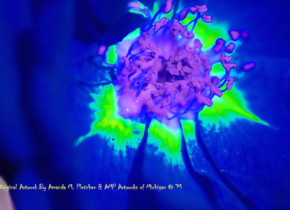 Michigan Flowers: 2017 Art Photography Image (SINGLE) By Amanda M. Pletc