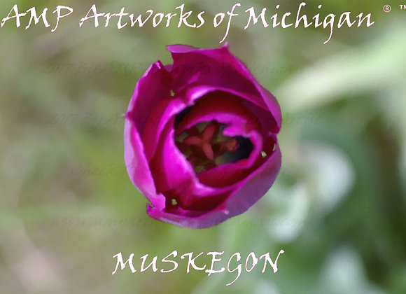 "AMP Artworks of Michigan Floral ""Muskegon"" Tee"