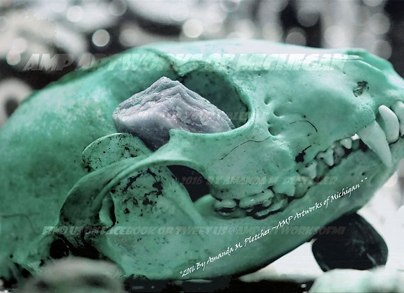 Use Your Pretty Skull Art (GREEN) By Amanda M. Pletcher