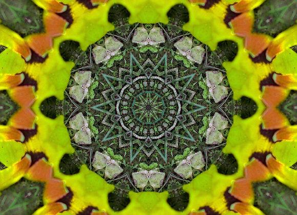 """AMP Artworks of Michigan Original """"Mandala Style"""" Design TANK OR TEE"""