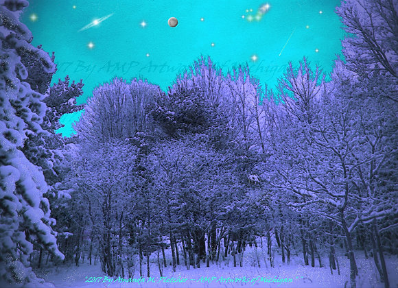 Winter Cosmos Forest Art Digital Images