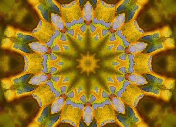 """Artworks of Michigan Original """"Mandala Style"""" Design TANK OR TEE"""